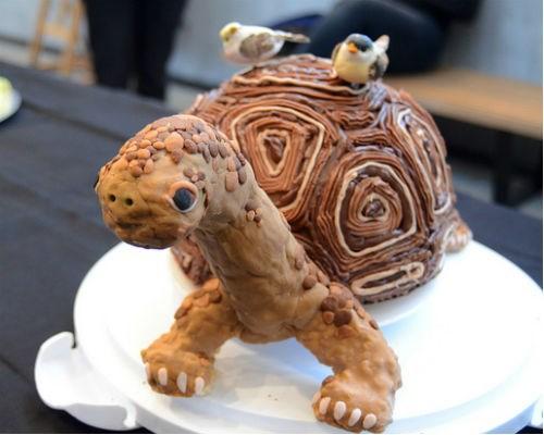 Darwin Turtle cake
