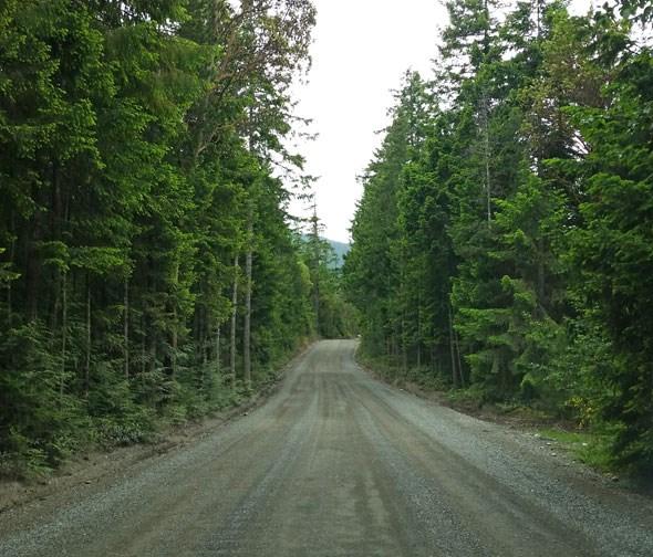 horne-lake-road