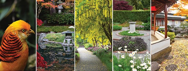 UBCBG-header-image-gardendays