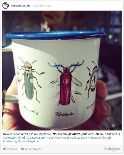 entomology cup