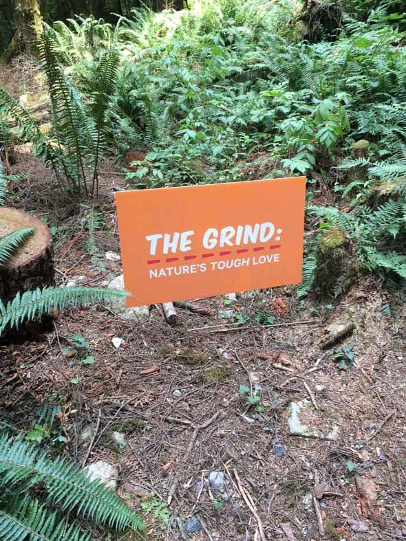 A very accurate sign on the way up.
