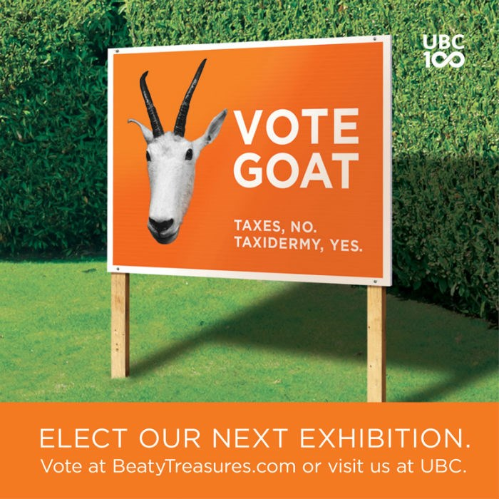Vote for Goat