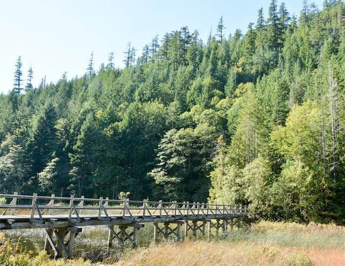 Bridge on the Brohm Lake Trail. Photo: Stephen Hui.