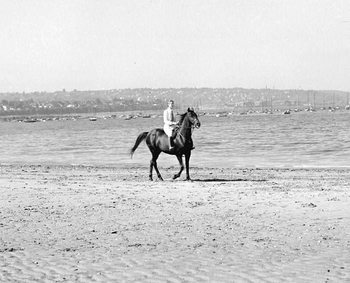 horse-kits-beach