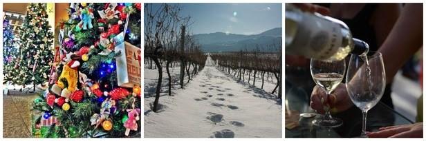 oliver-osoyoos-winter-2015