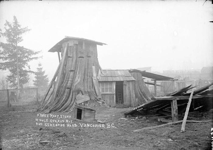 stump-house