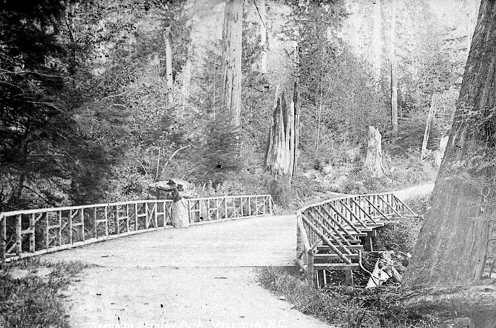 bridge-stanley-park