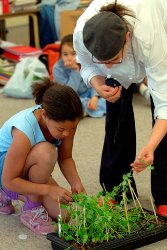 Kids learn to grow vegetables with Growing Chefs!