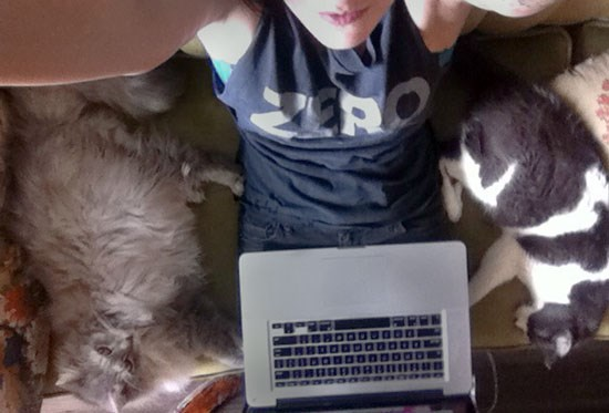 I will be your cat lady narrator until further notice. Send me your cat photos!