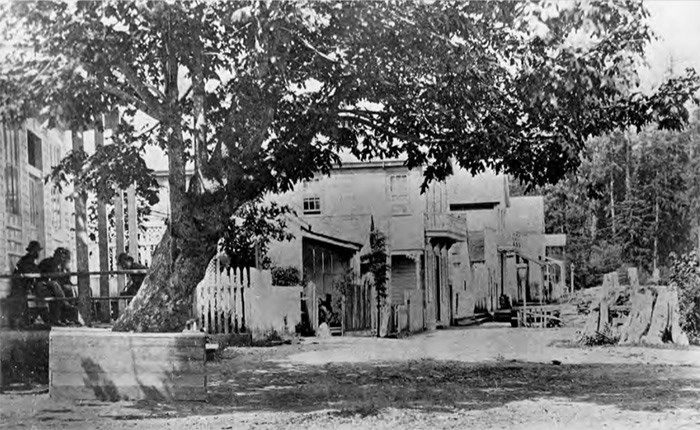 Gastown. Dominion Photo Co. photo, Vancouver Public Library VPL 24322.