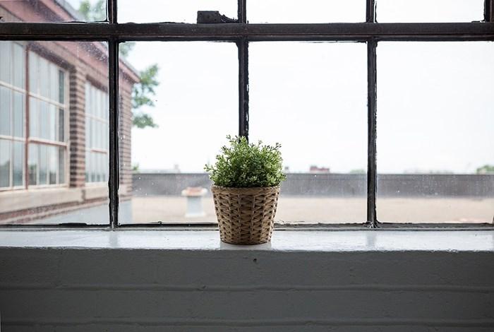 HomeStars Window