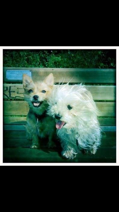 Tia and Lu