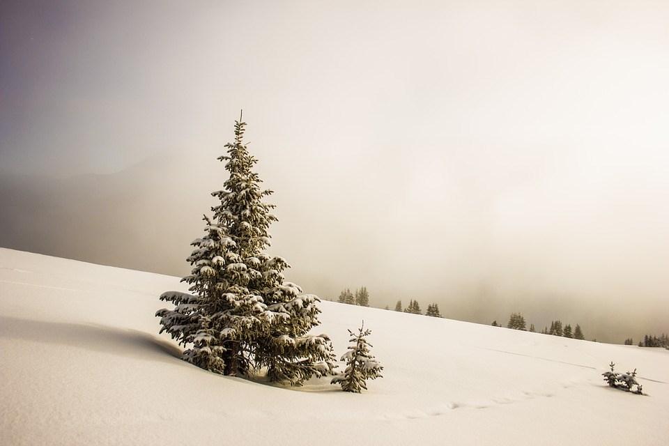 cold-1840617_960_720