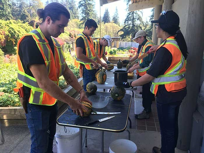 Student learn how to harvest squash seeds