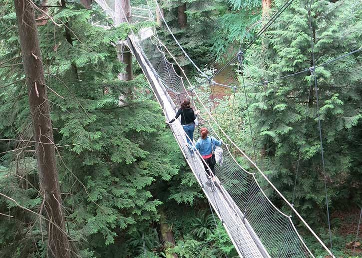 Greenheart TreeWalk is open every day until October 31