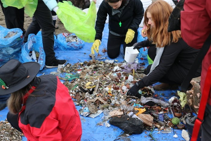 Volunteers organizing the collected garbage/Duncan Anderson