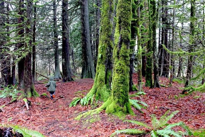 Spirit Trail (Photo: V.I.A.)