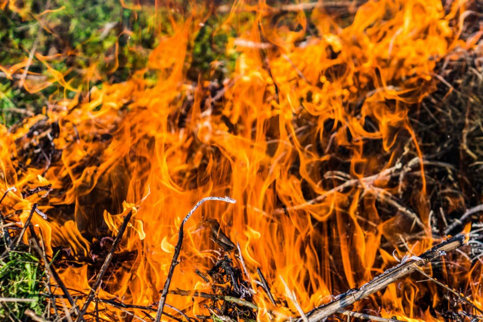 Fire/Shutterstock