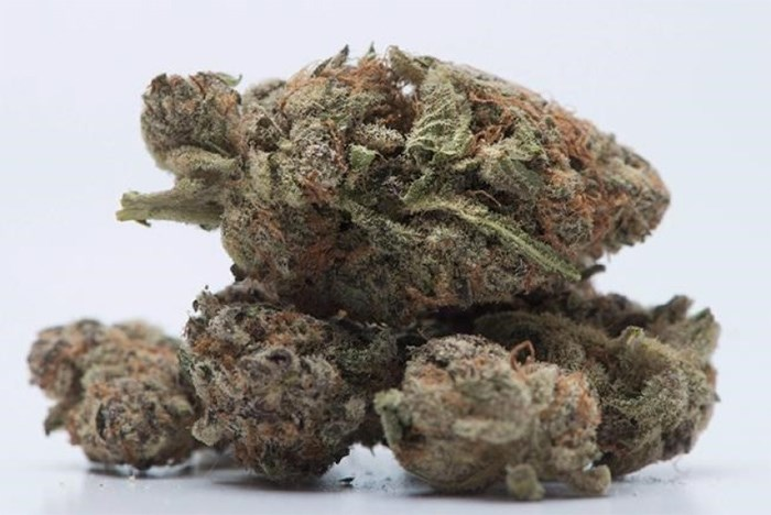 Canada should be doing more to warn people, especially youth, about the risks of marijuana use as the federal government gets ready to legalize recreational pot this summer, a University of Victoria professor says.