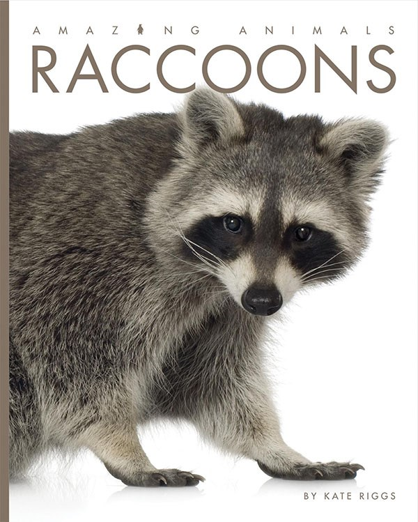 Raccoons by Kate Riggs