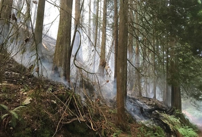 Debris smoulders on the slopes above Whyte Lake in West Vancouver following a forest fire that broke out earlier this month. The Whyte Lake trail has official been reopened. Photo West Vancouver Fire and Rescue