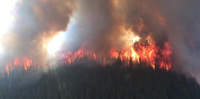 It's been a much calmer fire season this year, and the weather is mostly the reason.
