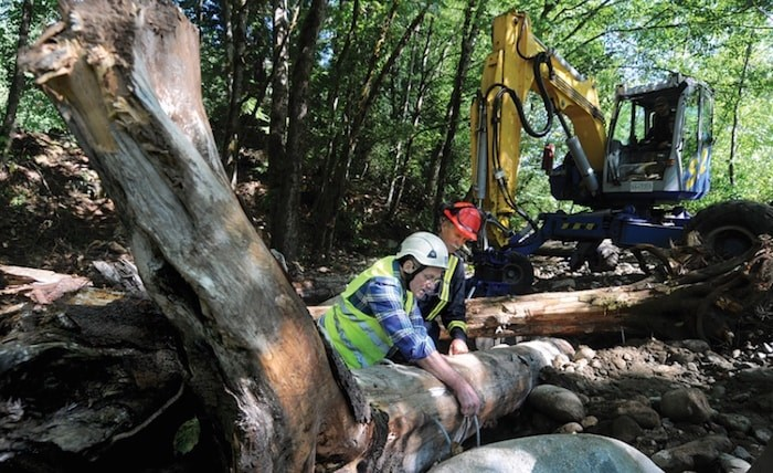 North Shore Streamkeepers Glen Parker and Colin Fraser check the steel cables that will attach tree stumps and logs to large boulders, creating habitat for juvenile coho in a channel of Lynn Creek. photo Mike Wakefield, North Shore News