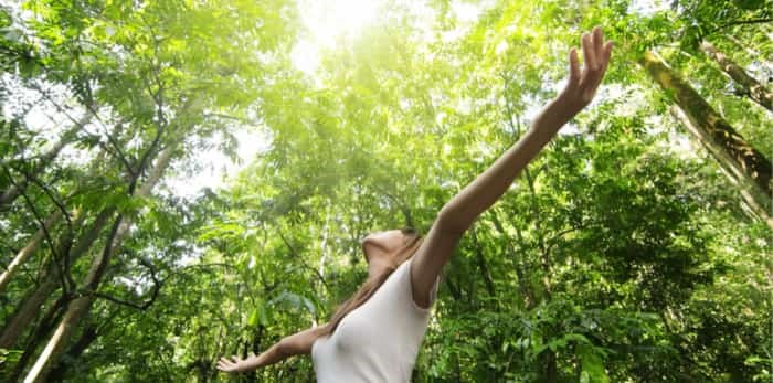 Photo: woman in the forest / Shutterstock