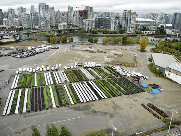 The 52-unit temporary modular housing complex for the homeless that will be situated at 265 West First will be neighbours with Sole Food's Olympic Village Farm. Sole Food is working with the city and BC Housing on potential links between urban farming and the modular building. Photo Dan Toulgoet