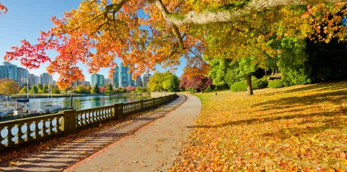 Photo: fall in Vancouver / Shutterstock