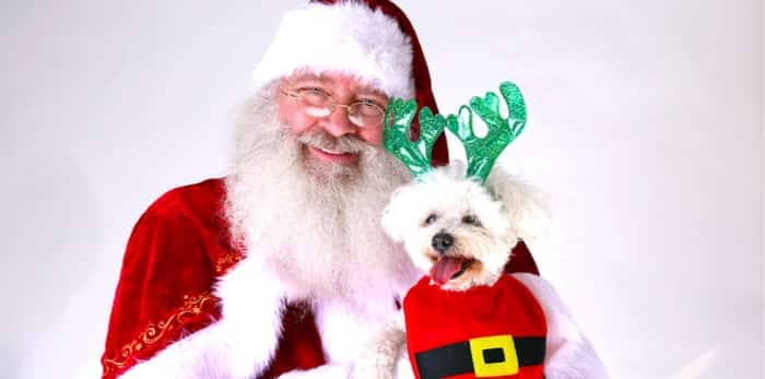 Santa Claus smiles as he holds a dog / Shutterstock
