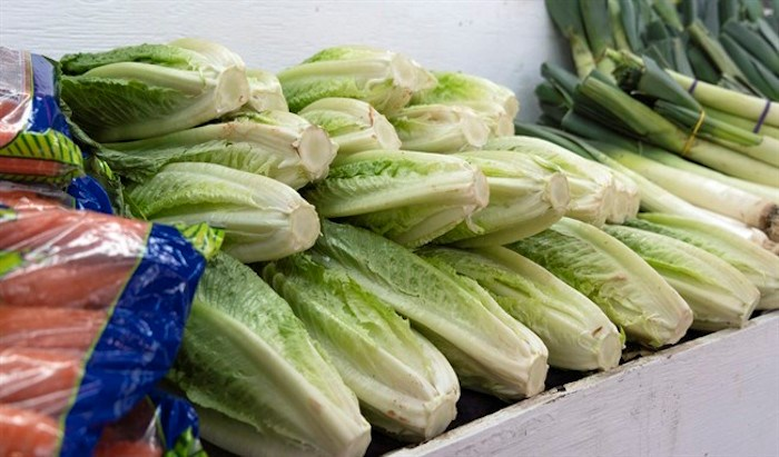 Romaine lettuce is seen at market in Montreal on Thursday, November 22, 2018. Restaurants and grocery stores in Canada have not officially been told to pull their stocks of romaine lettuce, but an ongoing outbreak of E.coli is prompting many to do just that. THE CANADIAN PRESS/Paul Chiasso