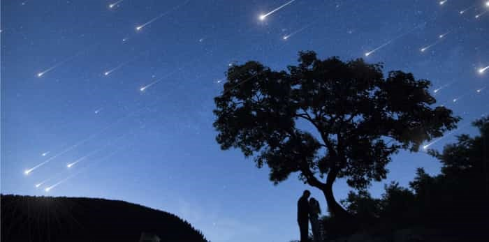 Silhouette couple under a tree and enjoying Star shower in nights cape / Shutterstock