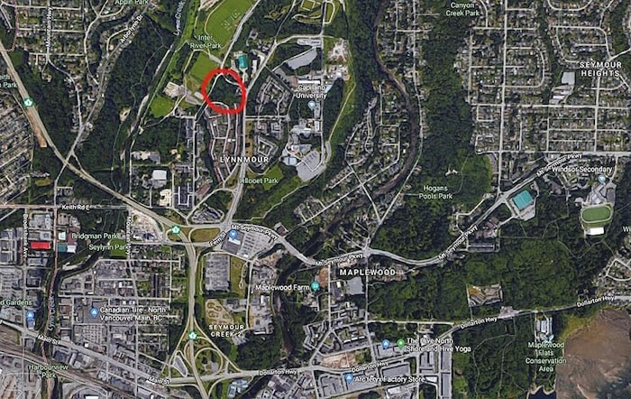 The red circle shows the rough area where the trees have been illegally cut. Google Maps.