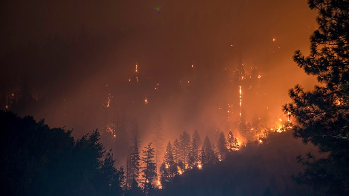 B.C.'s chances of experiencing wildfires and electricity infrastructure damages are lower than California's, says BC Hydro. Photo: Matt Howard/Unsplash