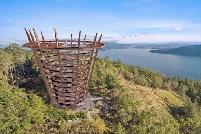 Artist's rendering of the proposed Malahat Skywalk lookout tower.Photograph By A. SPIRE BY NATURE