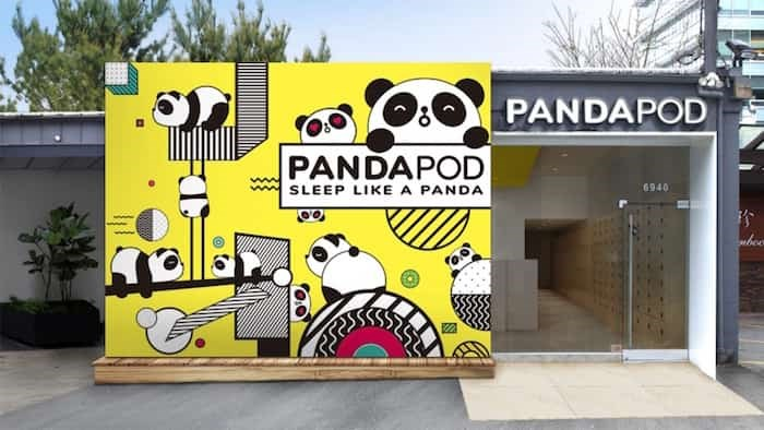 Panda Pod Hotel in Richmond. Photo: Submitted
