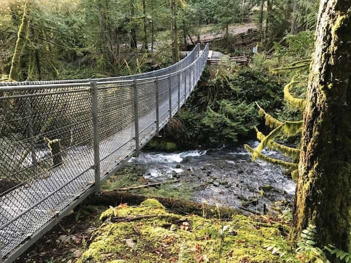 The suspension bridge over the Goldstream River, near the beginning of the hike. - Ken Armour