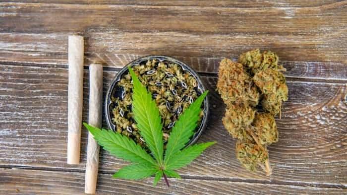 Cannabis/Shutterstock