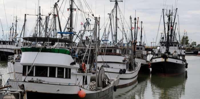 Commercial fishing boats docked in Steveston / Shutterstock