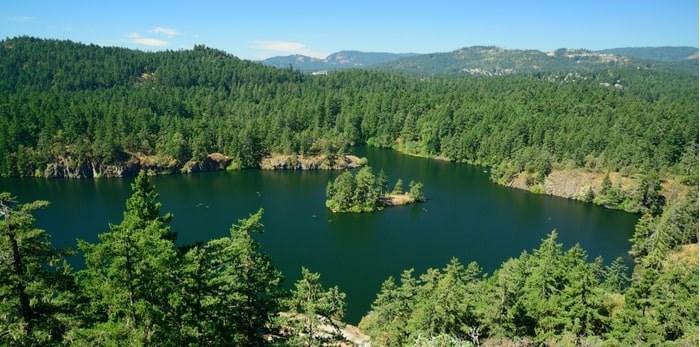 Thetis Lake Regional Park/Shutterstock