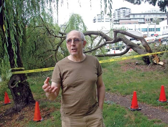 Joel Posluns, owner of Aiki Enterprises in Lower Lonsdale, says the City of North Vancouver should be taking better care of public spaces on his street after a tree toppled over and nearly hit a dog walker Tuesday evening. Photo: Brent Richter / North Shore News