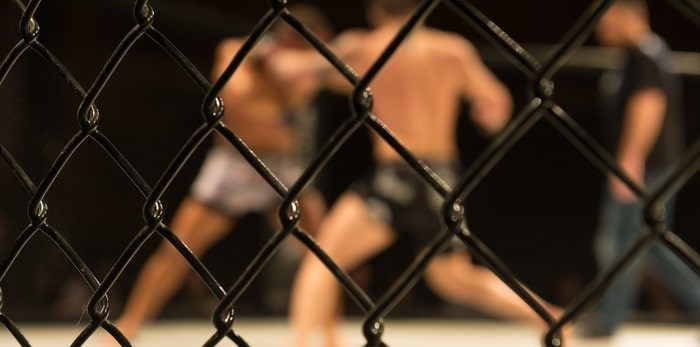MMA fighters in a match/Shutterstock