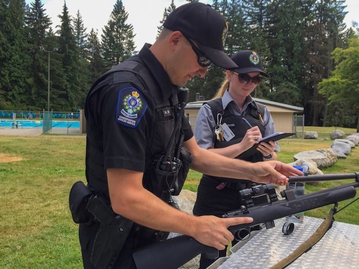 Conservation officer Wyatt Pile and Mackenzie Mercer, who is a wildlife safety officer, were working in Mundy Park Wednesday after it was reported that a bear and cubs were in the area not far from Spani Pool, where children were playing. Photo by Diane Strandberg/Tri-City News