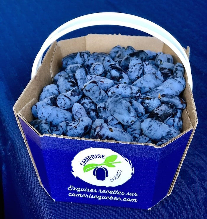 Camerise, or haskap, berries are grown regionally. They are like a more tart, more delicate blueberry. Photo by Lindsay William-Ross/Vancouver Is Awesome