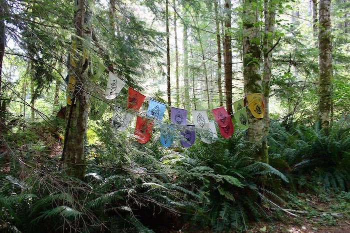 A colourful sight along the path that leads you down to Open Bay. Photo by Lindsay William-Ross/Vancouver Is Awesome