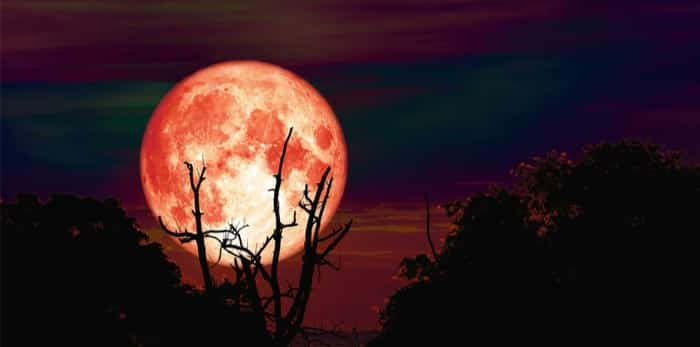 Photo: Hunter Moon / Shutterstock