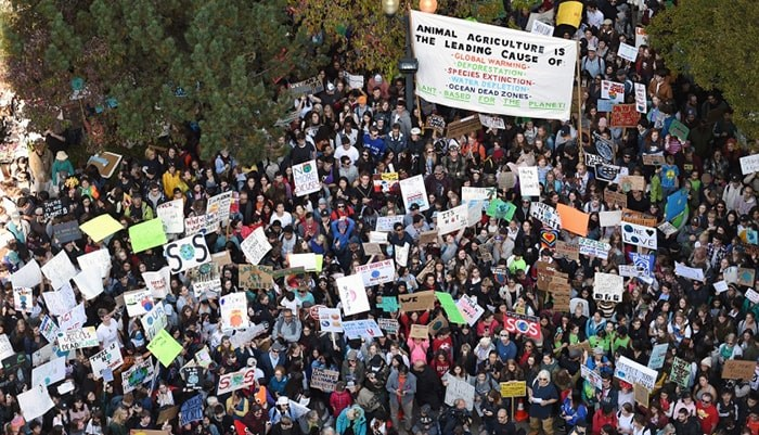 Tens of thousands attended the Global Climate Strike at Vancouver city hall Sept. 27 before marching over the Cambie Street Bridge into downtown. Photo Dan Toulgoet