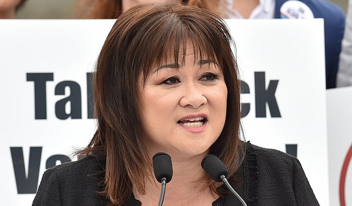 Wai Young is looking to win back the seat she held from 2011 to 2015. Photo: Dan Toulgoet
