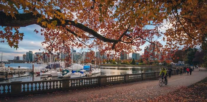 Photo: Stanley Park fall day / Shutterstock